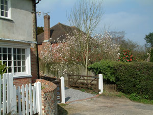self-catering holiday cottages