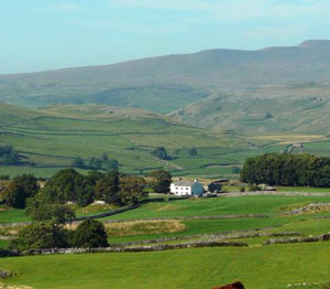 A cottage in the Yorkshire Dales